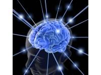 Undele cerebrale si starile psiho-mentale